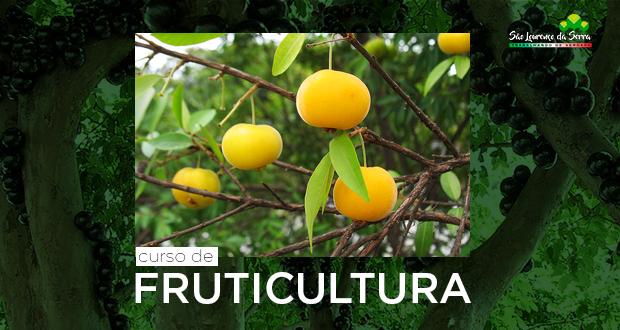 CURSO GRATUITO de Fruticultura básica para capacitação do produtor e trabalhador rural